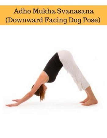 adho mukha svanasana downward facing dog yoga basics for beginners