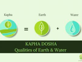 understanding kapha dosha ayurvedum