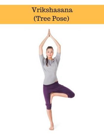 vrikshasana tree yoga basics for beginners