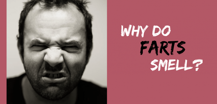 why do farts smell