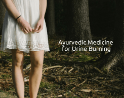 Ayurvedic medicine for urine burning