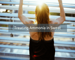 sweat smells like ammonia