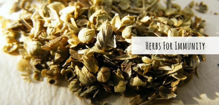 Immunity Boosting Herbs