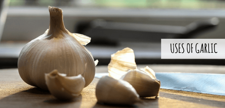 benefits of eating garlic