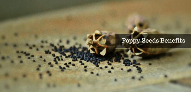 poppy seeds benefits