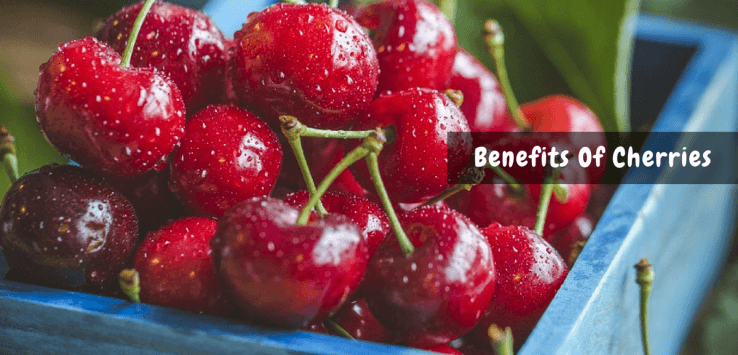 benefits of cherries