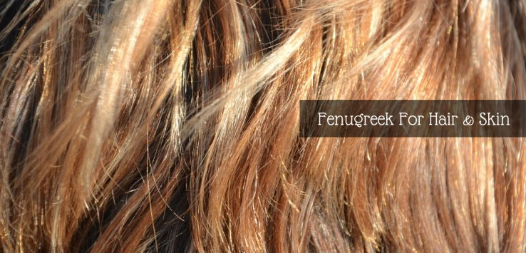 methi seeds for hair