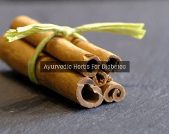 herbs for diabetes