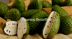 soursop benefits