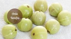 amla benefits