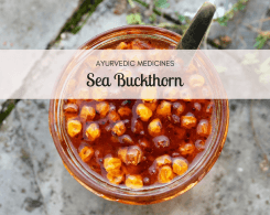 sea buckthorn benefits