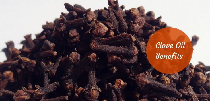 Clove Oil Benefits