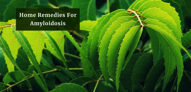 Amyloidosis Treatment_Ayurvedum