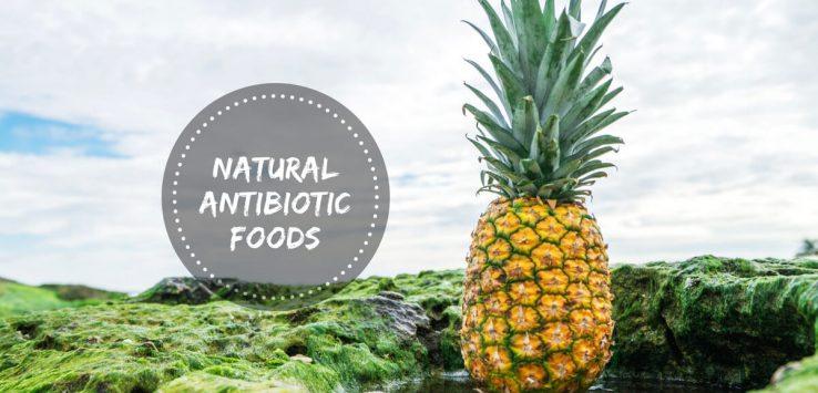 Natural Antibiotics _ Ayurvedum