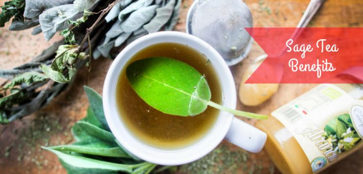Sage tea Benefits _ Ayurvedum