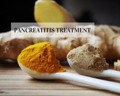 Pancreatitis treatment _ Ayurvedum