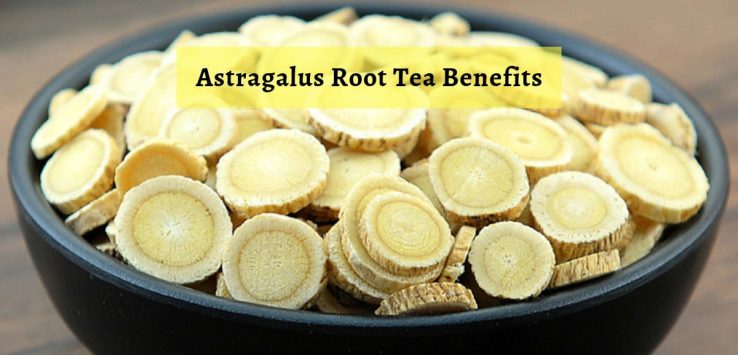Astragalus benefits _ Ayurvedum