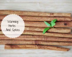 warming herbs and spices