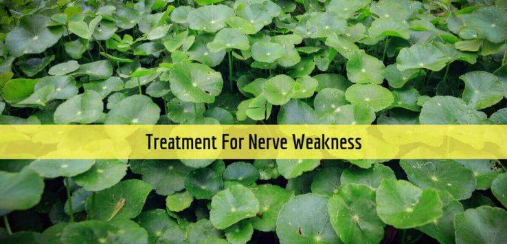 Nerve Weakness _ Ayurvedum