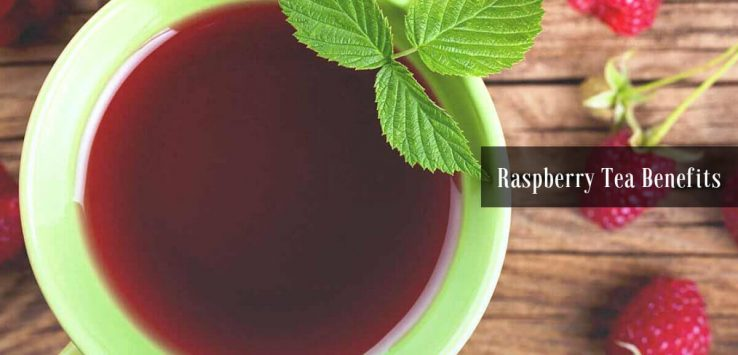 Raspberry leaf tea benefits _ Ayurvedum