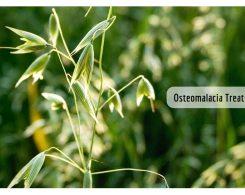 Osteomalacia symptoms _ Ayurvedum