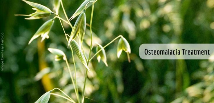 Osteomalacia symptoms _ Ayurvedum
