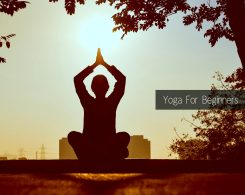 yoga poses for beginners _ Ayurvedum