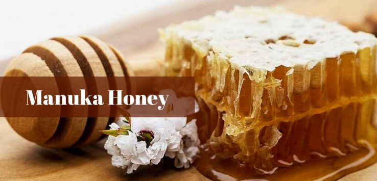 Manuka Honey Health Benefits _ Ayurvedum