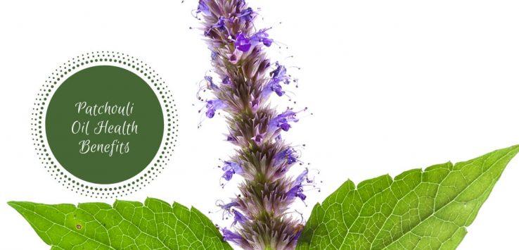 patchouli oil benefits_ Ayurvedum