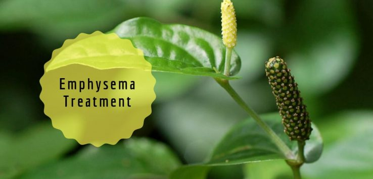 what is emphysema _ Ayurvedum
