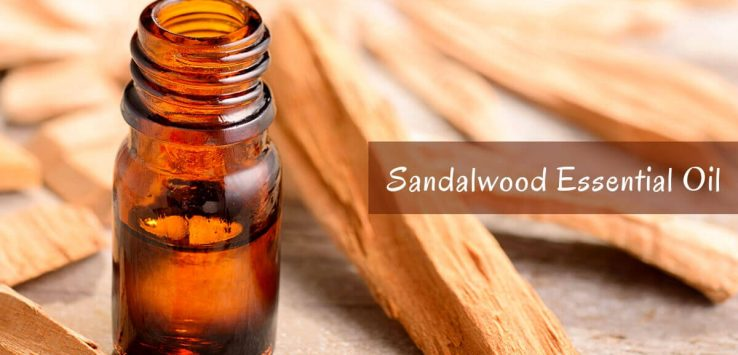 Pure sandalwood oil benefits _ Ayurvedum