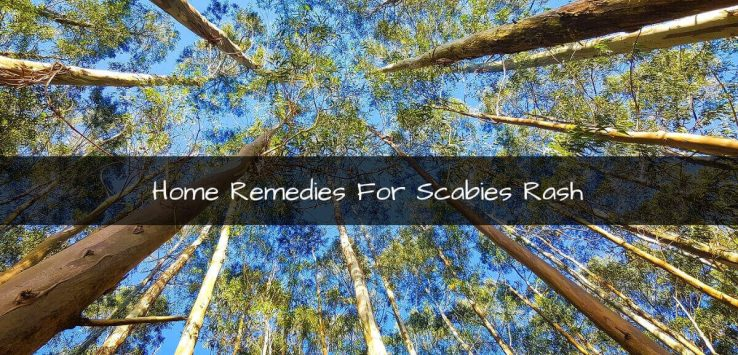 Scabies Rash: What Is Scabies & How To Get Rid Of It Naturally?