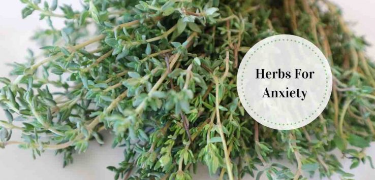 anti anxiety herbs