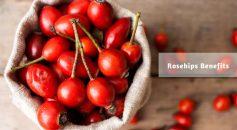 rose hips benefits _ Ayurvedum
