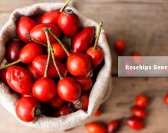 rose hips benefits _ Ayurvedum