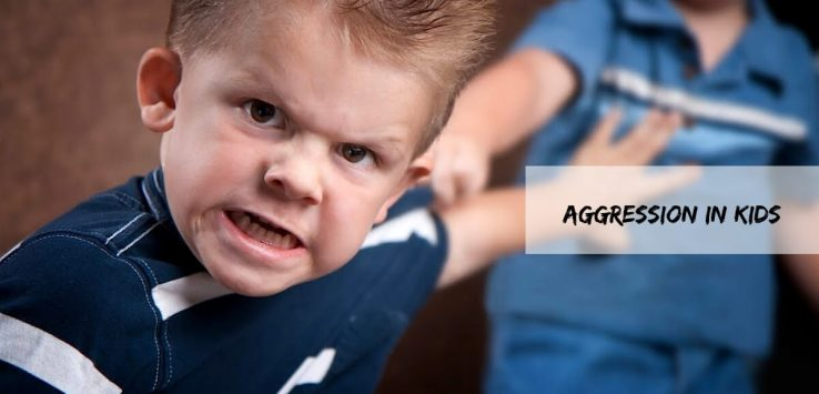 aggression in children _ Ayurvedum