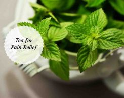 tea for inflammation and pain