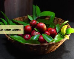 Kokum benefits _ Ayurvedum