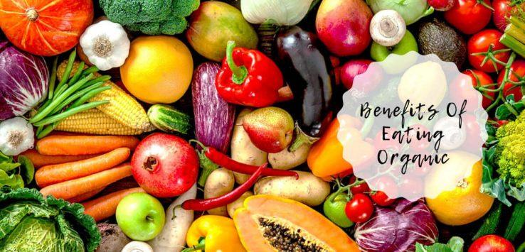organic food _ Ayurvedum