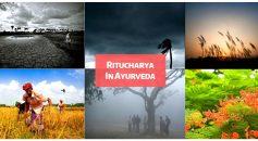 ritucharya in ayurveda _ Ayurvedum