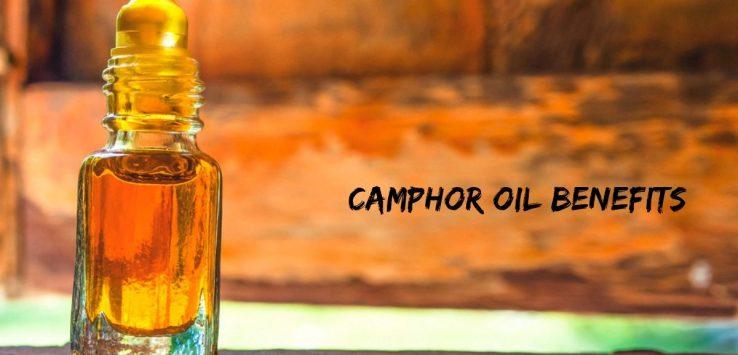 Camphor oil _ Ayurvedum