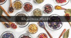 herbs for digestion _ Ayurvedum