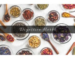 herbs for digestion _ Ayurvedum