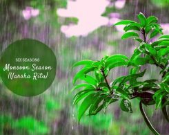 monsoon season ( varsha ritu ) _ Ayurvedum (1)