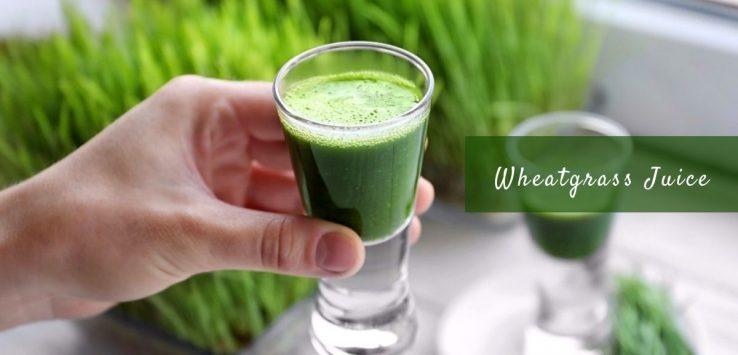 wheatgrass juice _ Ayurvedum